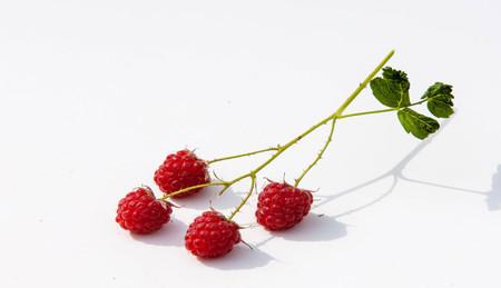 Raspberry  razz  fence  stash. Stock Photo