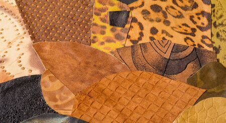 texture background pattern. decorative animal skin, bright colors painted. The panel is made by the artist. Screen printing on the skin of the animal This patterned animal is perfect for your design Reklamní fotografie