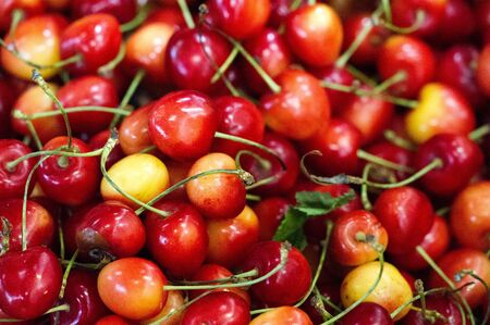Cherry In the United States, most sweet cherries are grown in Washington, California, Oregon, Wisconsin, and Michigan. Important sweet cherry cultivars include Bing Ulster Rainier Brooks Tulare King 免版税图像