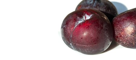 Plum Fruit tree with small juicy edible fruits, which have a large bone,. an oval fleshy fruit that is purple, reddish, or yellow when ripe and contains a flattish pointed pit. 免版税图像