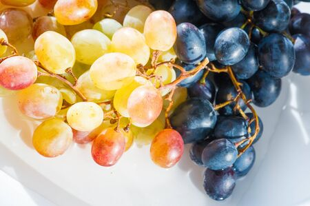 Grapes can be eaten fresh as table grapes or they can be used for making wine, jam, juice, jelly, grape seed extract, raisins, vinegar, and grape seed oil. Grapes are a non-climacteric type of fruit Stock Photo
