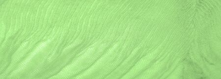 Texture, background, pattern, green silk corrugation crushed fabric for your projects