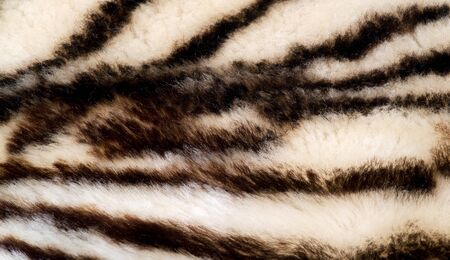 Texture, fur, Figure. Painted sheepskin under the leopard. a sheep's skin with the wool on. cover the surface of (something) with paint, as decoration or protection.
