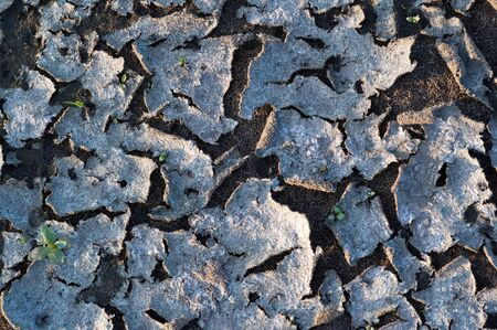 Texture, background, pattern, Earth, broken from sunlight, soil erosion, brightly degenerate pattern, abstract cracks. Wallpaper, background for the designer
