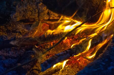 Fire in its most common form can lead to a fire that can cause physical damage when burning. Fire is an important process that affects environmental systems around the world.