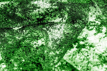 Texture, pattern, lace fabric in green on a white background. This is a subtle and classy lace of medium weight and is perfect for your design, overlays for backgrounds, other accents