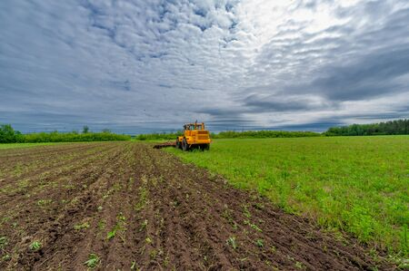 Spring photography, landscape with agricultural machinery, a tractor plows the land, plows a field, birds fly over arable land Standard-Bild