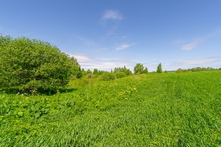 Spring photography, landscape with a cloudy sky. water meadows, floodplains, ravines. an area of low-lying ground adjacent to a river, formed mainly of river sediments and subject to flooding.