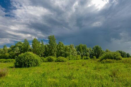 summer landscape, thunderclouds, blue sky, floodplain meadow fields, the aroma of summer colors and a variety of wildflowers