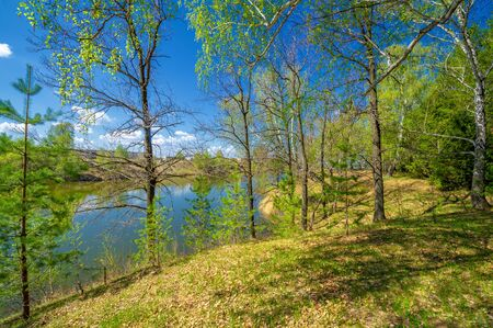 Photos of the pond, source, birch forest. A lake is an area filled with water, localized in a basin surrounded by land, with the exception of any river or other outlet Stok Fotoğraf - 141727899