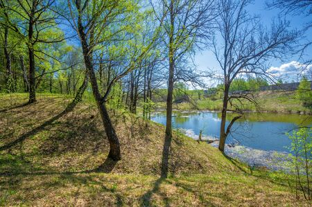 Photos of the pond, source, birch forest. A lake is an area filled with water, localized in a basin surrounded by land, with the exception of any river or other outlet