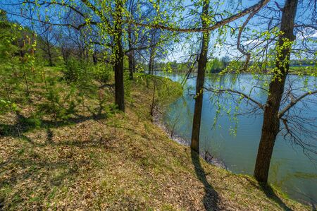 Photos of the pond, source, birch forest. A lake is an area filled with water, localized in a basin surrounded by land, with the exception of any river or other outlet Stok Fotoğraf - 141728132