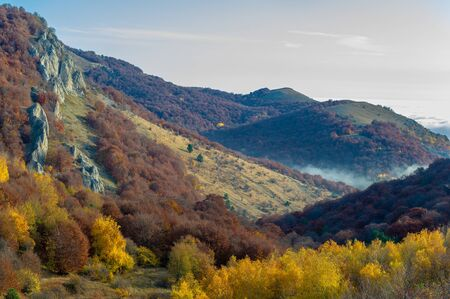 Autumn photos of the Crimean peninsula. High in the mountains above the clouds. Beech, pine, hornbeam, forest in the Demerdji mountains