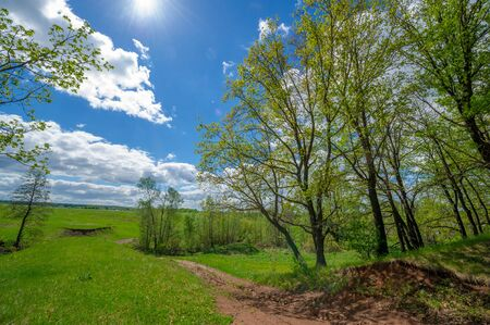 Spring photography, fields, meadows, spring beauty of ravines, amazing blue sky in white fluffy clouds, the earth wakes up after a winter cold