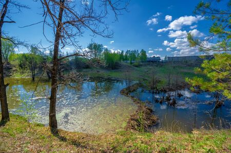 Photos of the pond, source, birch forest. A lake is an area filled with water, localized in a basin surrounded by land, with the exception of any river or other outlet Stok Fotoğraf - 141762314