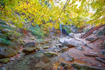 Photos of the Crimean peninsula in the fall, beech-hornbeam forest. It grows at an altitude of 650-700 m, forests of rocky oak are replaced by beech and hornbeam. soil and water conservation Reklamní fotografie