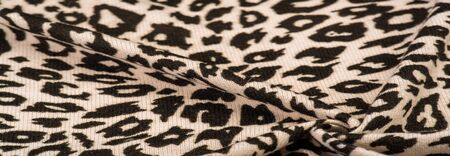 Texture, background, pattern, women's woolen shawl, black and beige, African motifs, shawl made of wool and modal with print in the form of a snake with a hem. Archivio Fotografico