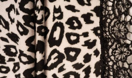 Texture, background, pattern, women's woolen shawl, black and beige, African motifs, shawl made of wool and modal with print in the form of a snake with a hem. Reklamní fotografie