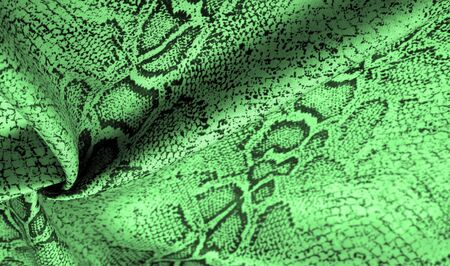 Texture, background, pattern, fabric with a green snake skin pattern, African fabric, designer photo - safari in the country of Africa