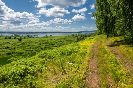 Lush green grass, pine, birch, hazel grow along the edge of the river.