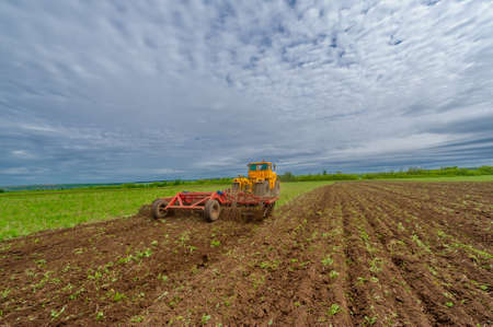 Spring photography, landscape with agricultural machinery, a tractor plows the land, plows a field, birds fly over arable land