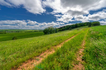 Spring photography, landscape, dirt road or path made from the earth's surface through which it passes