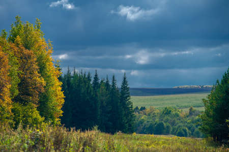 Autumn landscape photo. Wooded landscape of a European mixed forest in the fall season, large blue clouds, light breaks through, illuminating the ground
