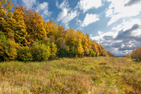 Autumn landscape photo. Mixed forests, meadows, ravines, cloudy sky, wonderful season.
