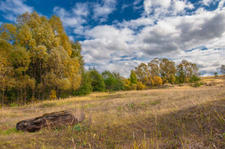 Autumn landscape photo. Mixed forests, meadows, ravines, cloudy sky, wonderful season. Imagens