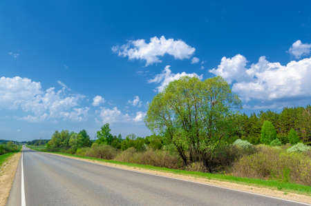 spring photo taken with a wide-angle lens, local highway, bright green trees, clouds in the blue sky