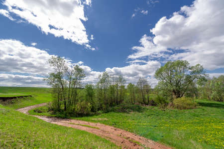 Spring photography, fields, meadows, spring beauty of ravines, amazing blue sky in white fluffy clouds, the earth wakes up after a winter cold.