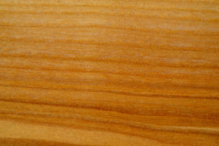 Solid oak and ash, polished and lacquered. Design element. Book cover. Social networks. Web design. Announcement. Texture background pattern