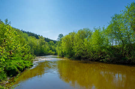 Spring photography, river flowing through the forest, clear blue sky, calm tenderness