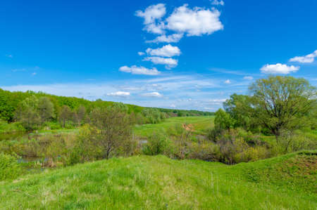 Spring photography, an old ravine formed by melting snow and summer rains. Deciduous forest of walnut, oak, birch, mountain ash and linden grows around the edges. Bright gentle sky with white clouds