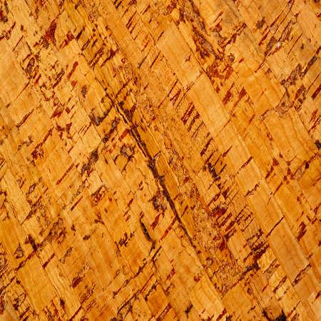 Texture, background, ornament, cork, floor and wall tiles. Peel - Quercus Suber L cork oak bark grown in the Western Mediterranean.