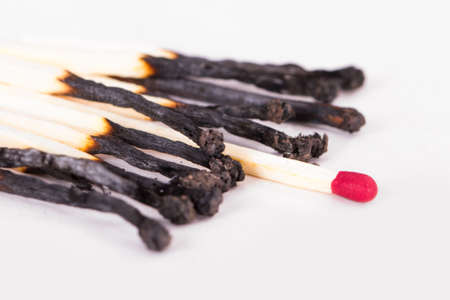 Leadership concept, red headed match standing out from burnt matches, isolated on white background.