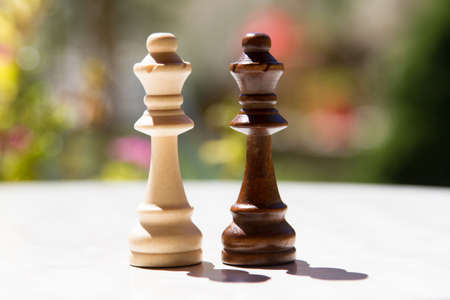 battle plan: Chess pieces, queens on white table with blurry background.