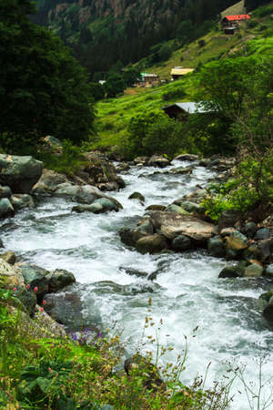kackar: Stream with stones and old traditional houses on green Demirkapi Plateau, Kackar Mountains, Trabzon, Turkey.