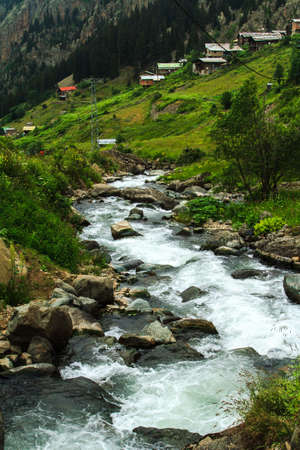 Stream with stones and old traditional houses on green Demirkapi Plateau, Kackar Mountains, Trabzon, Turkey. photo