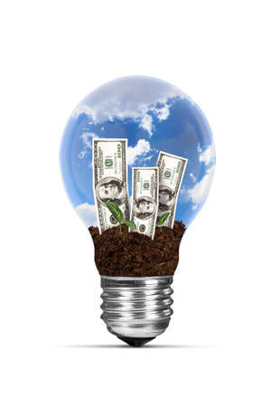 One hundred dollar banknotes with green plants growing in electric light bulb, isolated on white background. photo