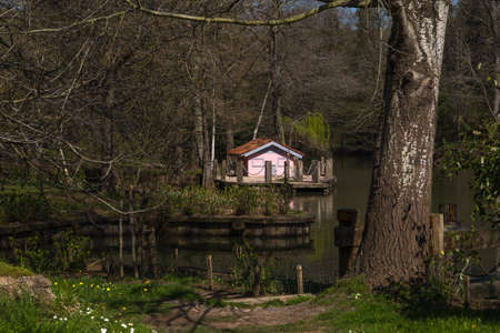 riverside trees: Lake in forest, river among trees, house in lakeshore, bare trees in riverside.