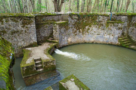 water well: Water in well in forest. Stock Photo