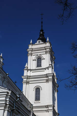 navy blue: Side view of the tower of Roman Catholic Cathedral in Ludza, Latvia, on navy blue sky background.