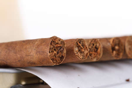 Chocolate cigars in row on white background.
