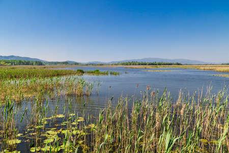 Efteni Lake in Duzce, Turkey.