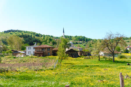 Landscape meadow view of village with small mountain houses among big trees and forest, on blue sky background. Stock Photo