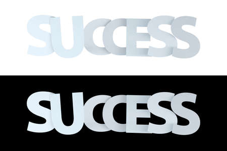 3d rendering of success text on white and black version.