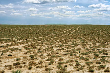 groundwater: Groundwater road in the desert steppe noon