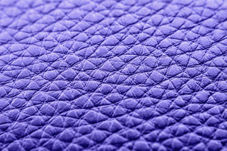 animal skin: Animal skin Texture of the close up  Stock Photo