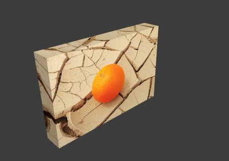 caked: Juicy Orange On Sunbaked Cracked Mud, conceptual of global warming.